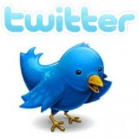 Twitter advertising revenue set to hit $150m - so still a minnow but a threatening one