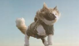 Swedish agency Akestam Holst and insurer Folksam score with skydiving cats