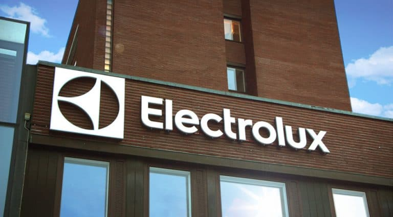 chapter 6 outline electroluxs global investment