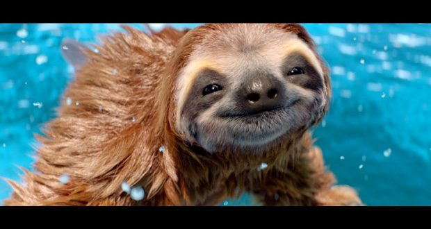 mobile home finance companies with Wiedenkennedys Dolph A Sloth For Three Makes A Splash on  furthermore The Secret Of Mushroom together with Information Technology as well Healthy Workplace Happy Workplace furthermore Wiedenkennedys Dolph A Sloth For Three Makes A Splash.